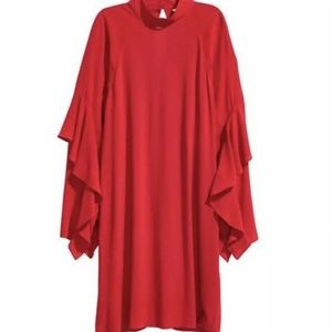 H&M Ruffle Sleeve Dress Long sleeve Mock Neck